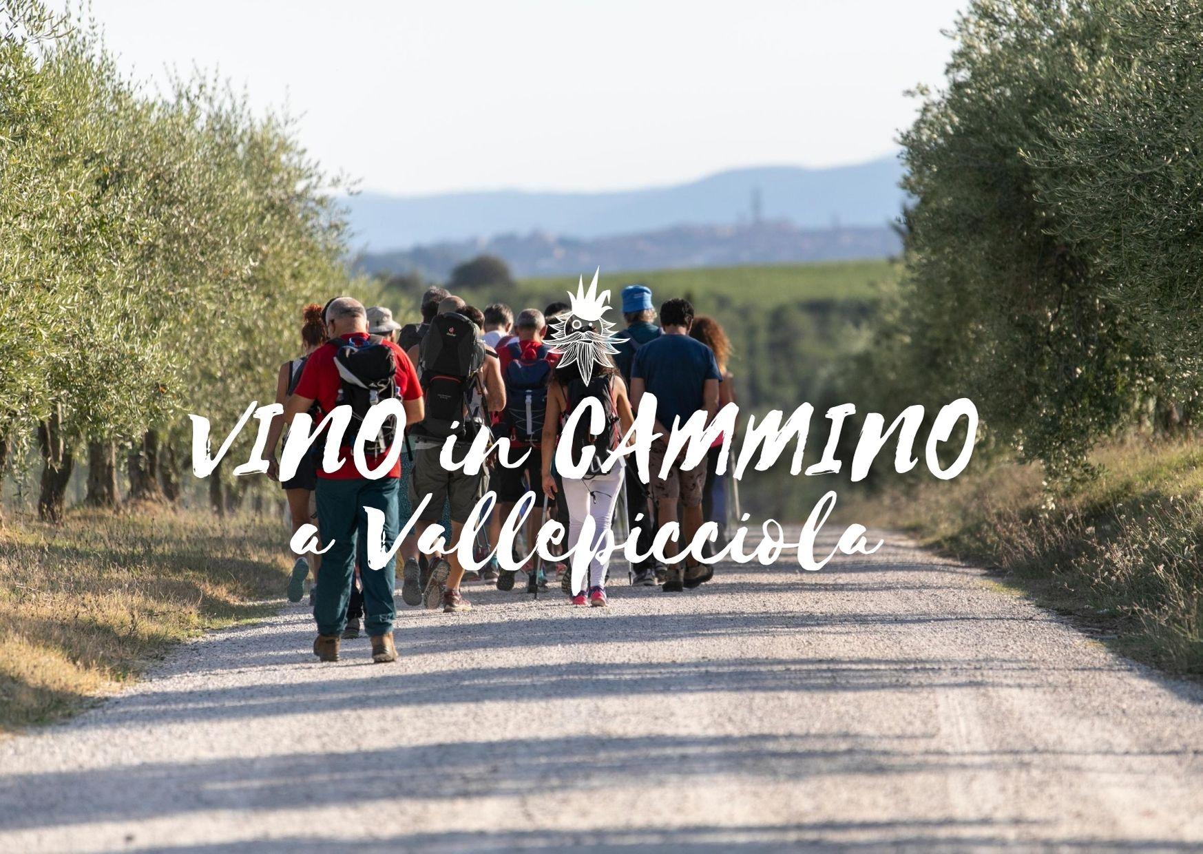 VINO in CAMMINO a Vallepicciola, con Sara Testi, Walking, Hiking and Tour Guide